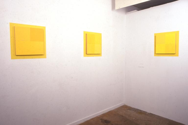 The Logic of Ambiguity/The Ambiguity of Logic (installation set of 5), acrylic/panel/wall paint